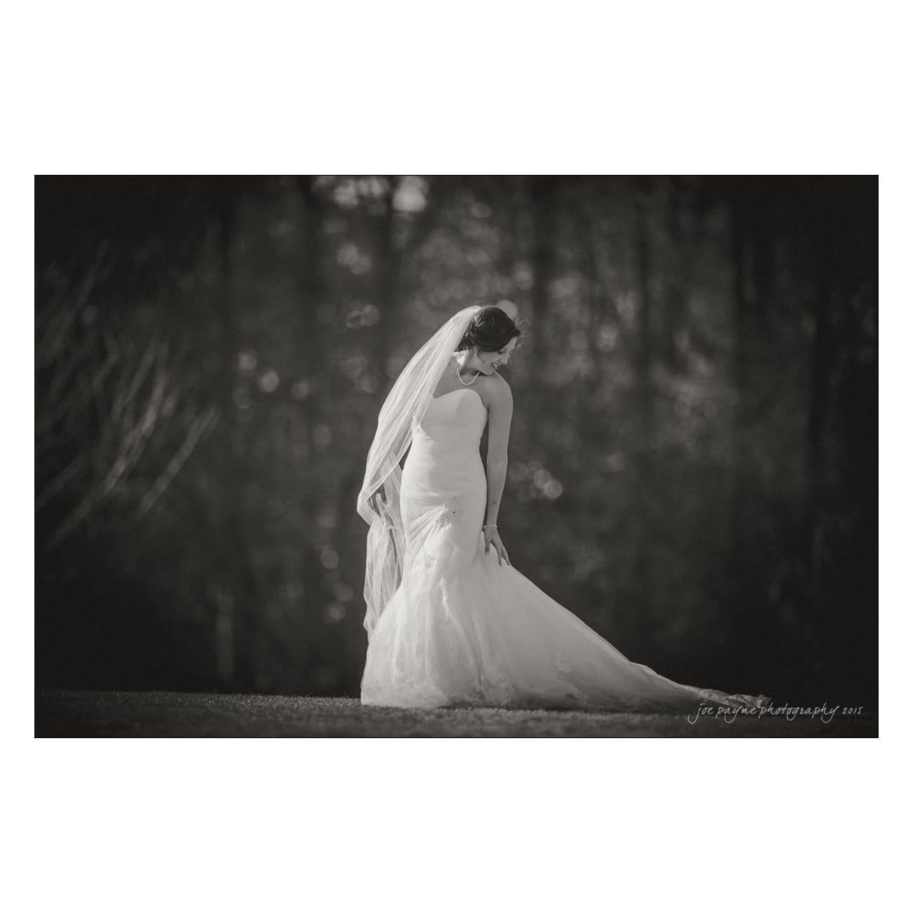 MichelleJonathan--506-Edit