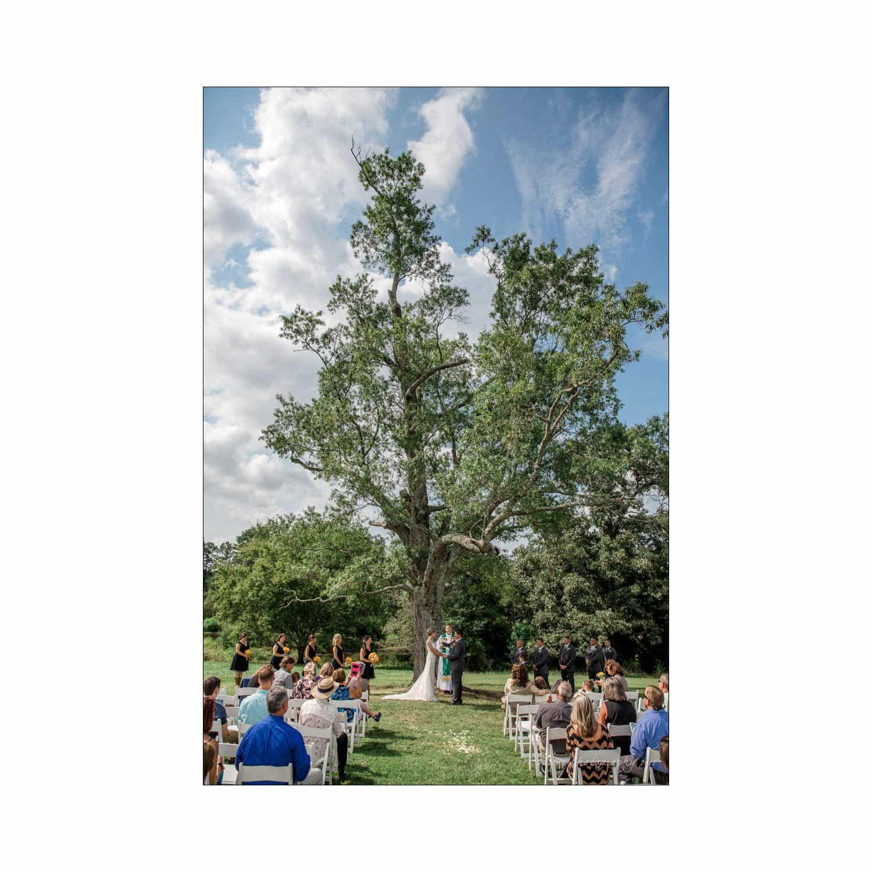Chapel Hill Wedding Photographer - Nicole & Wayne-51