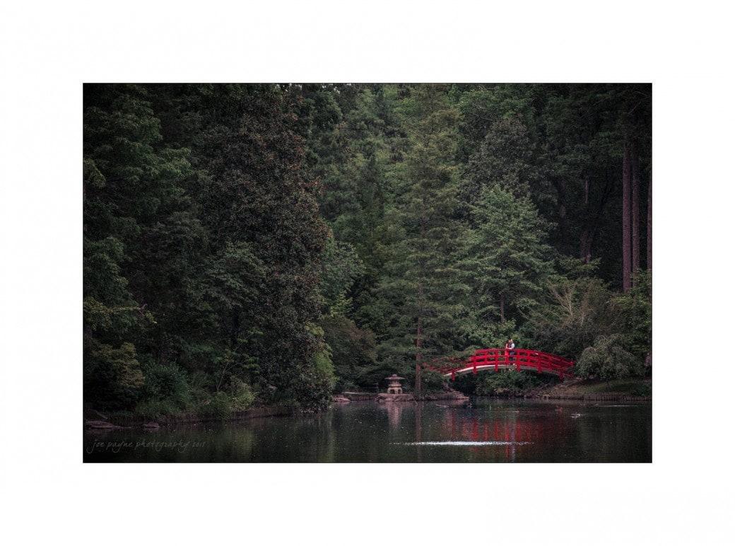duke gardens engagement photography red bridge landscape