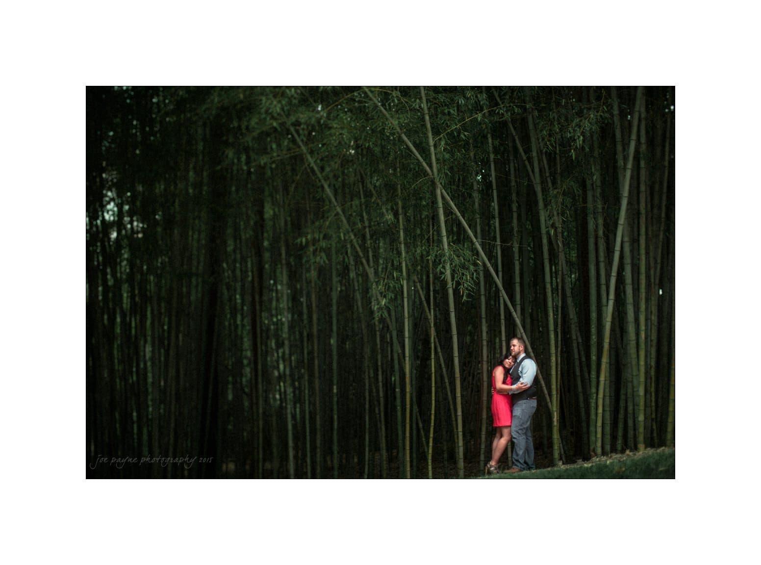duke gardens engagement photography bamboo
