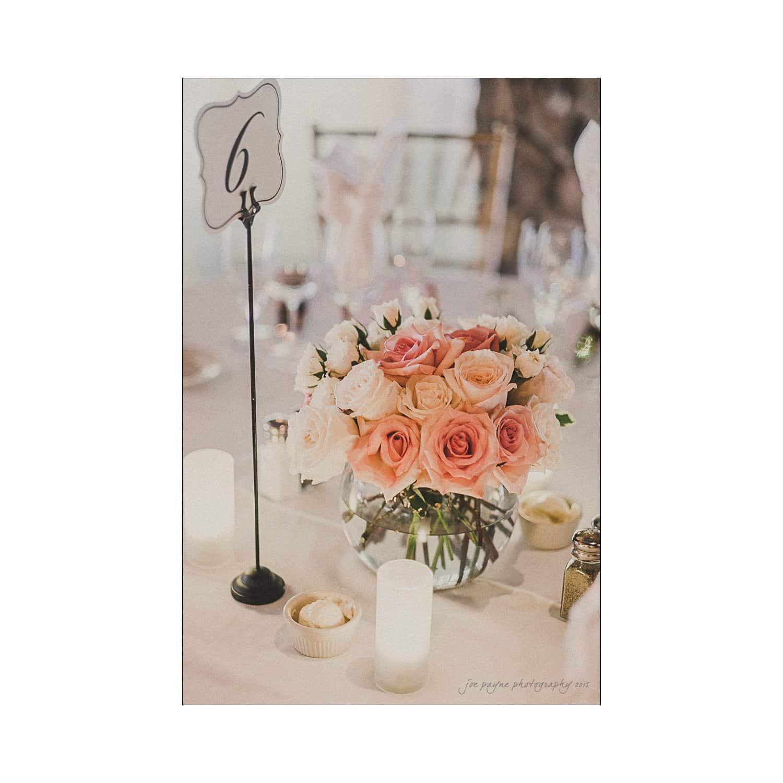 Raleigh Wedding Photographer - Annie & Grant-20