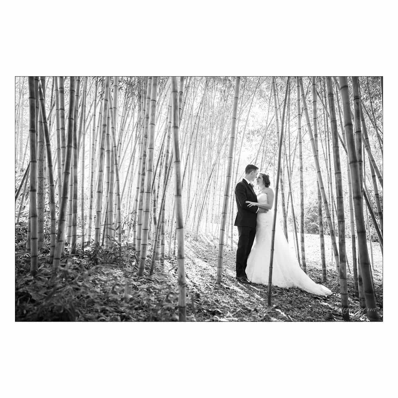 MichelleJonathan--440-Edit